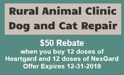 Mail-In-Rebate Expires 12/31/2019